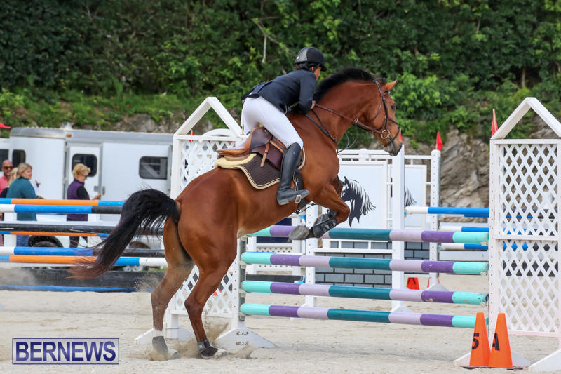 FEI-World-Jumping-Challenge-Bermuda-February-22-2015-33
