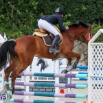 FEI World Jumping Challenge Bermuda, February 22 2015-34