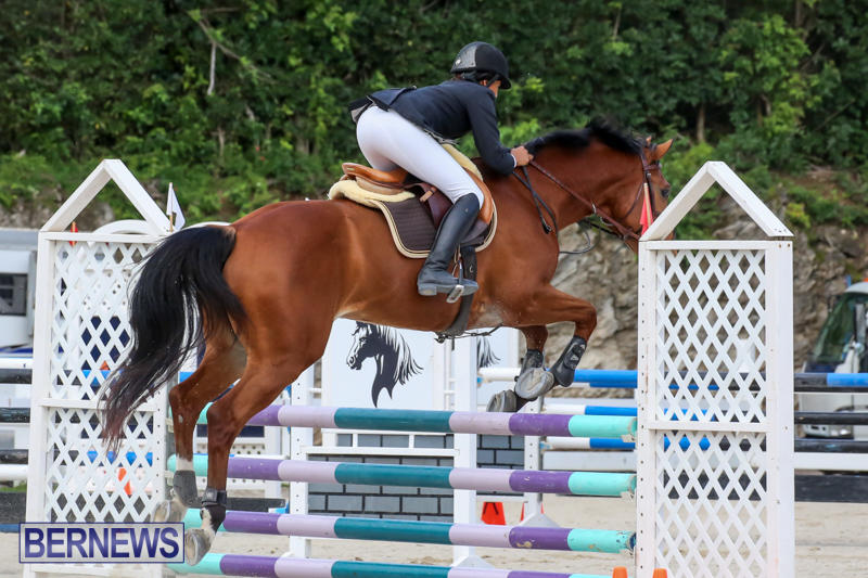 FEI-World-Jumping-Challenge-Bermuda-February-22-2015-34