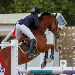 FEI World Jumping Challenge Bermuda, February 22 2015-35