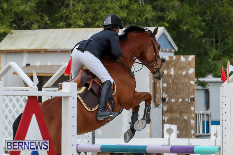 FEI-World-Jumping-Challenge-Bermuda-February-22-2015-35