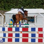 FEI World Jumping Challenge Bermuda, February 22 2015-36