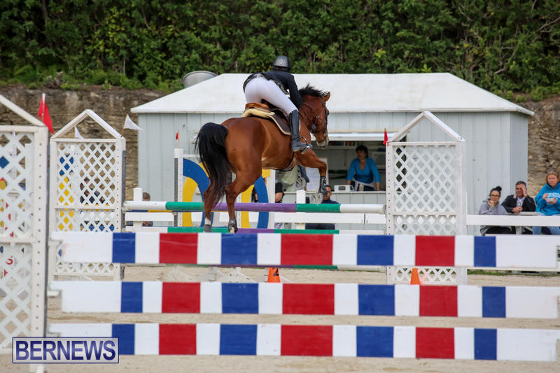 FEI-World-Jumping-Challenge-Bermuda-February-22-2015-36