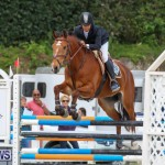 FEI World Jumping Challenge Bermuda, February 22 2015-37