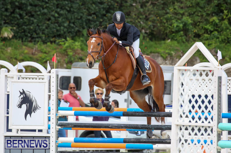 FEI-World-Jumping-Challenge-Bermuda-February-22-2015-37