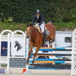 FEI World Jumping Challenge Bermuda, February 22 2015-38