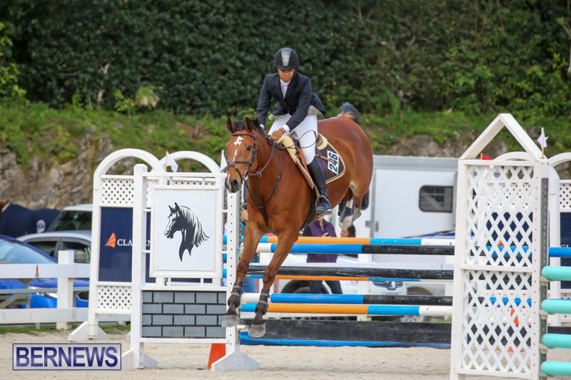 FEI-World-Jumping-Challenge-Bermuda-February-22-2015-38