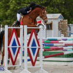 FEI World Jumping Challenge Bermuda, February 22 2015-39