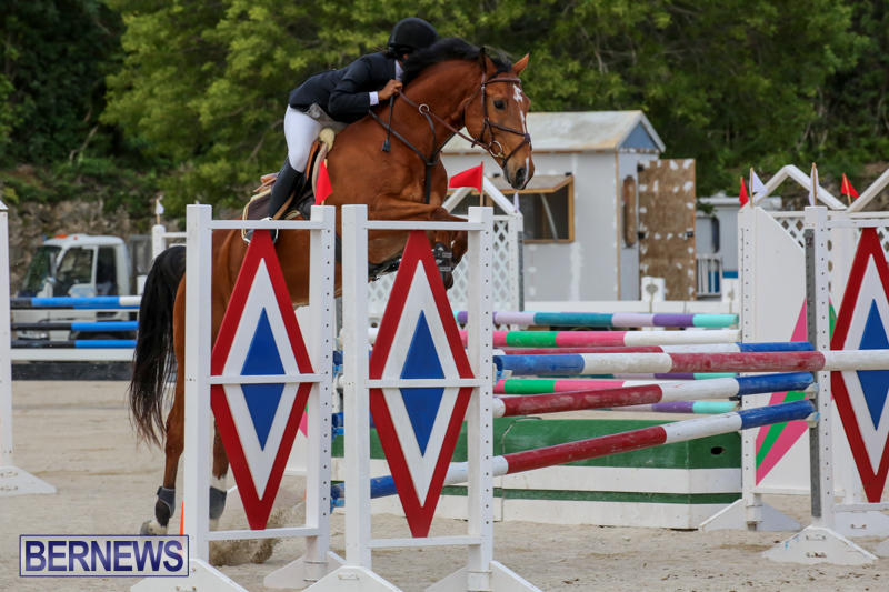 FEI-World-Jumping-Challenge-Bermuda-February-22-2015-39