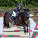 FEI World Jumping Challenge Bermuda, February 22 2015-4