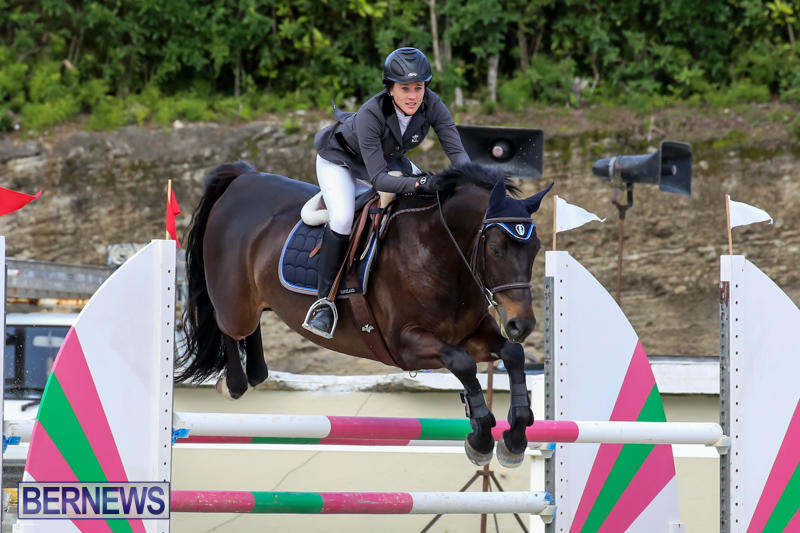 FEI-World-Jumping-Challenge-Bermuda-February-22-2015-4