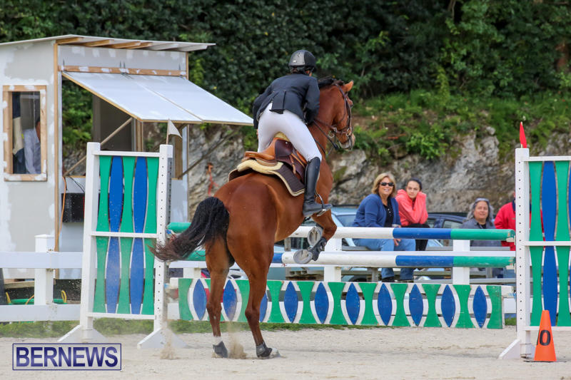 FEI-World-Jumping-Challenge-Bermuda-February-22-2015-40