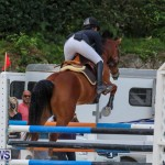 FEI World Jumping Challenge Bermuda, February 22 2015-41