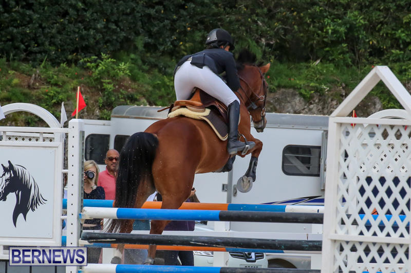 FEI-World-Jumping-Challenge-Bermuda-February-22-2015-41