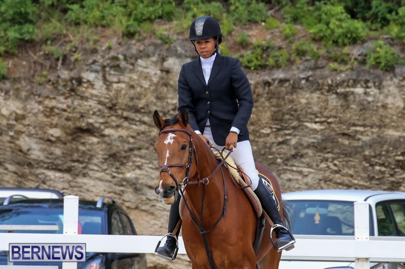 FEI-World-Jumping-Challenge-Bermuda-February-22-2015-42
