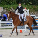 FEI World Jumping Challenge Bermuda, February 22 2015-43