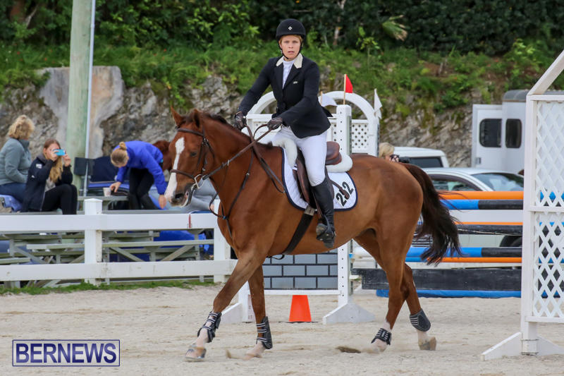 FEI-World-Jumping-Challenge-Bermuda-February-22-2015-43