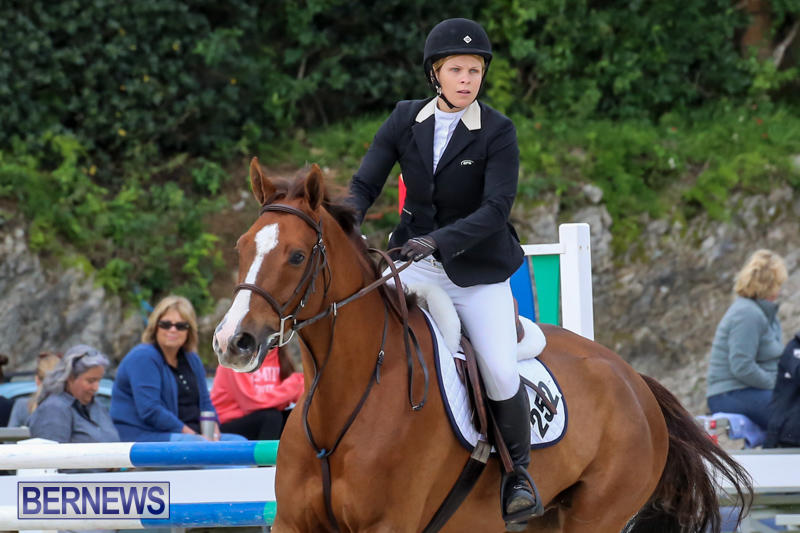 FEI-World-Jumping-Challenge-Bermuda-February-22-2015-44