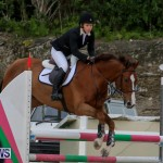 FEI World Jumping Challenge Bermuda, February 22 2015-45