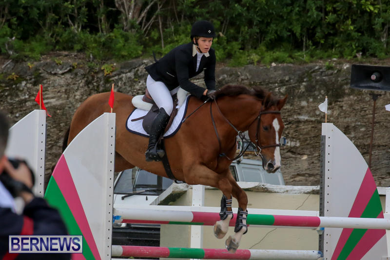 FEI-World-Jumping-Challenge-Bermuda-February-22-2015-45