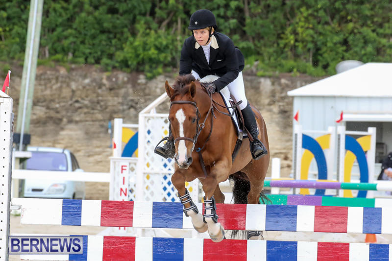 FEI-World-Jumping-Challenge-Bermuda-February-22-2015-48