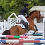 FEI World Jumping Challenge Bermuda, February 22 2015-49