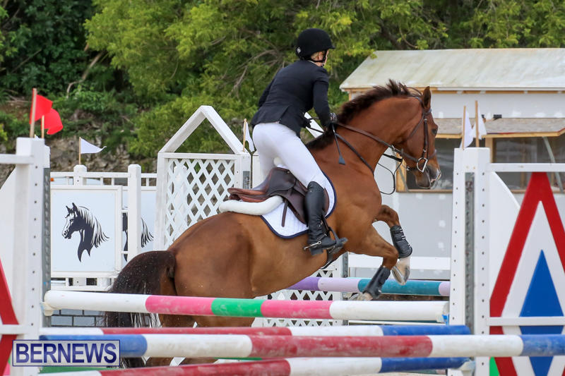 FEI-World-Jumping-Challenge-Bermuda-February-22-2015-49