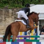 FEI World Jumping Challenge Bermuda, February 22 2015-50