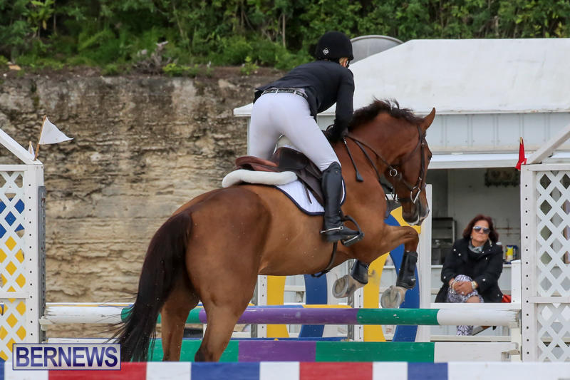 FEI-World-Jumping-Challenge-Bermuda-February-22-2015-50