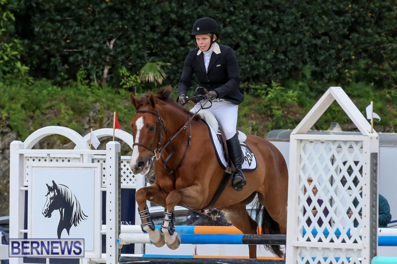 FEI-World-Jumping-Challenge-Bermuda-February-22-2015-51