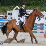 FEI World Jumping Challenge Bermuda, February 22 2015-53