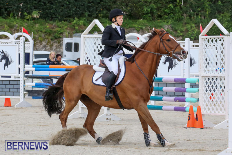 FEI-World-Jumping-Challenge-Bermuda-February-22-2015-53