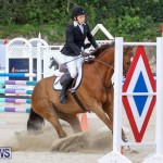 FEI World Jumping Challenge Bermuda, February 22 2015-54