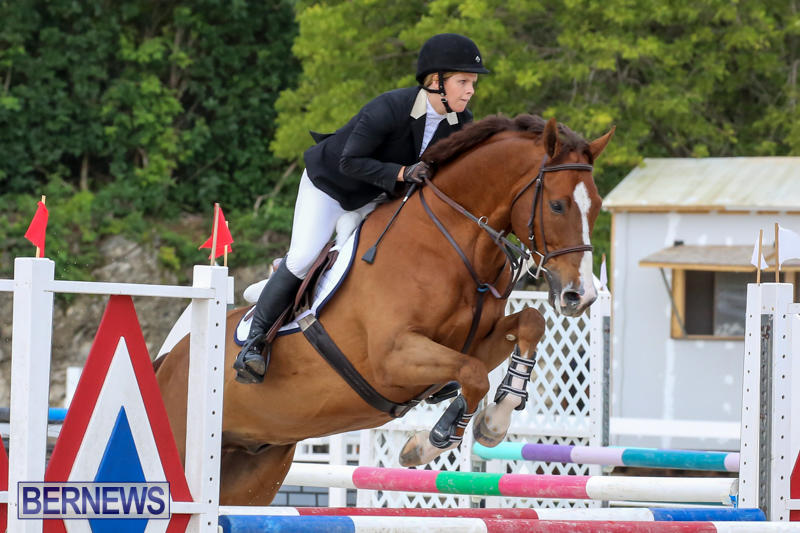 FEI-World-Jumping-Challenge-Bermuda-February-22-2015-56