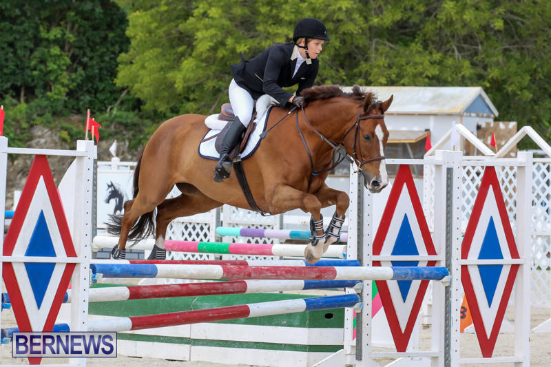 FEI-World-Jumping-Challenge-Bermuda-February-22-2015-57