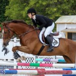 FEI World Jumping Challenge Bermuda, February 22 2015-58