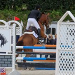 FEI World Jumping Challenge Bermuda, February 22 2015-59
