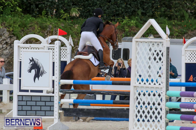 FEI-World-Jumping-Challenge-Bermuda-February-22-2015-59