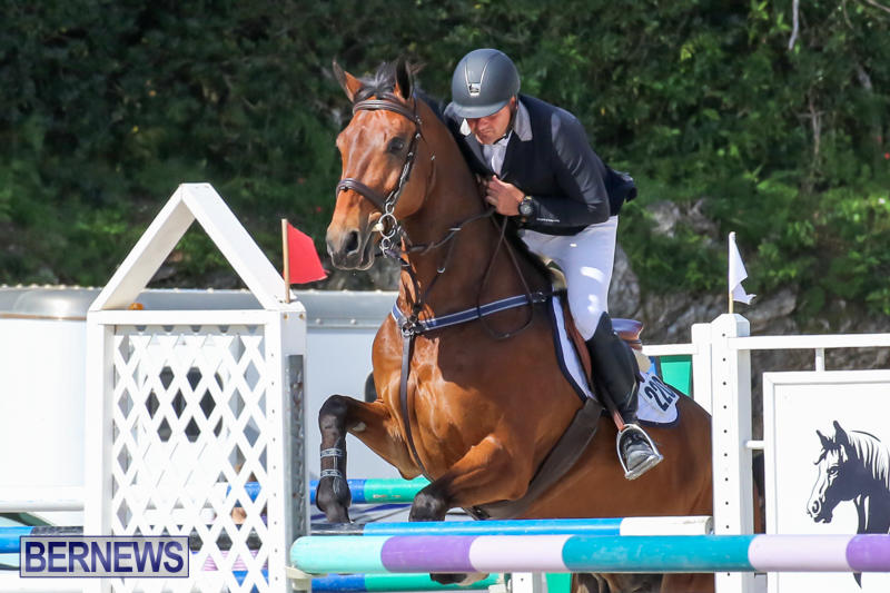 FEI-World-Jumping-Challenge-Bermuda-February-22-2015-62