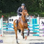 FEI World Jumping Challenge Bermuda, February 22 2015-64