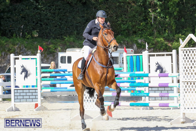 FEI-World-Jumping-Challenge-Bermuda-February-22-2015-64