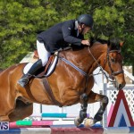 FEI World Jumping Challenge Bermuda, February 22 2015-65