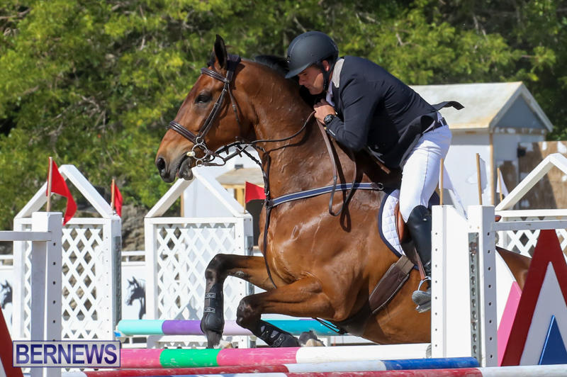 FEI-World-Jumping-Challenge-Bermuda-February-22-2015-68