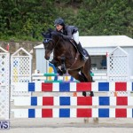 FEI World Jumping Challenge Bermuda, February 22 2015-7