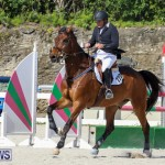 FEI World Jumping Challenge Bermuda, February 22 2015-70