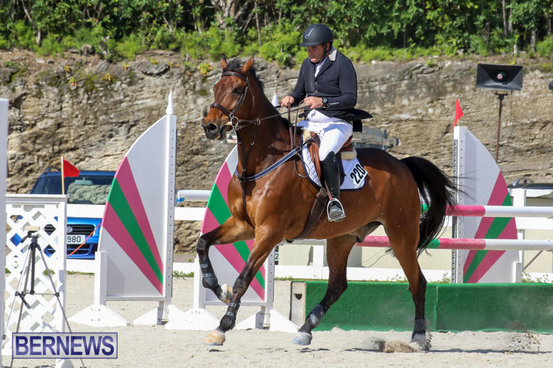 FEI-World-Jumping-Challenge-Bermuda-February-22-2015-70