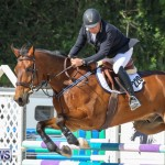 FEI World Jumping Challenge Bermuda, February 22 2015-71