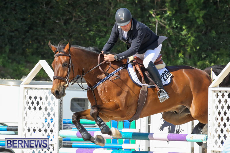 FEI-World-Jumping-Challenge-Bermuda-February-22-2015-71
