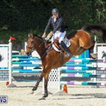 FEI World Jumping Challenge Bermuda, February 22 2015-72