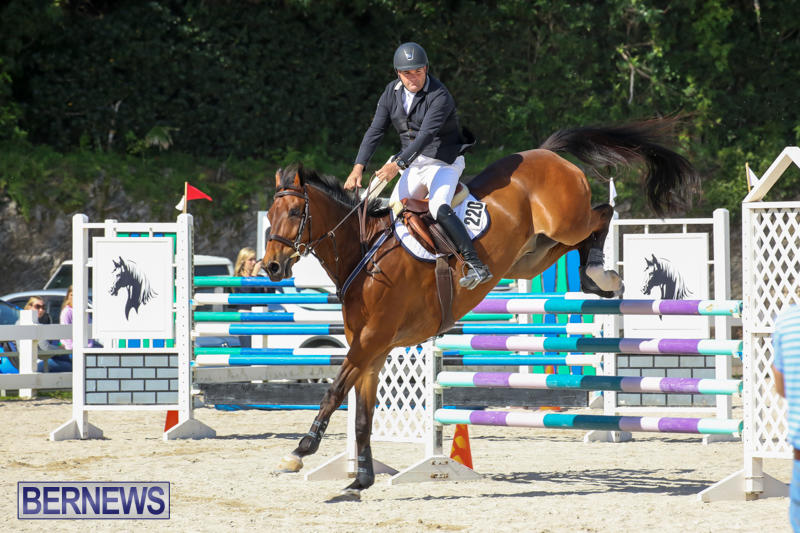 FEI-World-Jumping-Challenge-Bermuda-February-22-2015-72